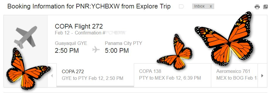 Woo-hoo! I'm headed to Mexico to see the Monarch Butterfly Migration!