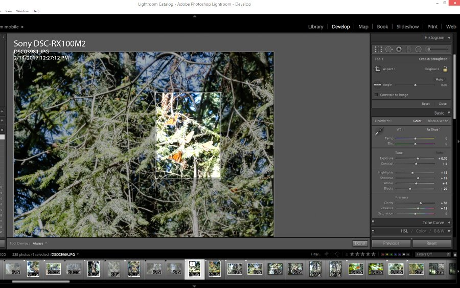 "The secret to ""zooming"" in Lightroom"