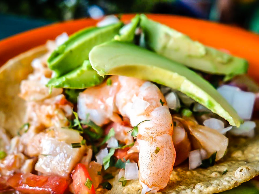 Mexico City Roma Foodie Walking Tour - Shrimp tostada